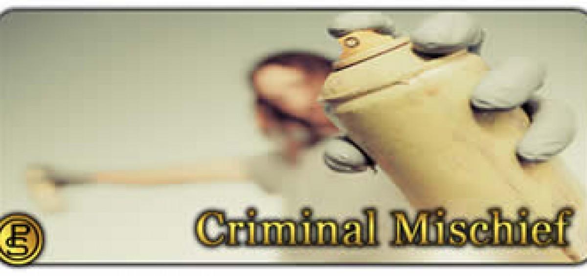 Criminal mischief image